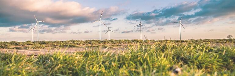 dag van de duurzaamheid 10tips