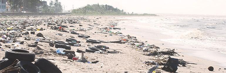 plastic in natuur blog