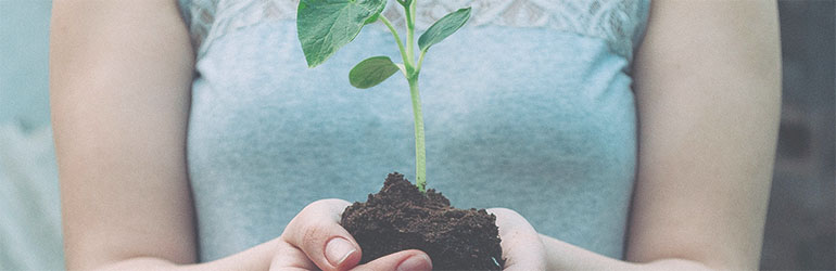 blog goed voor milieu