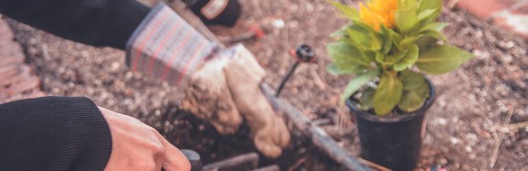 tuinieren met hart voor de natuur blog