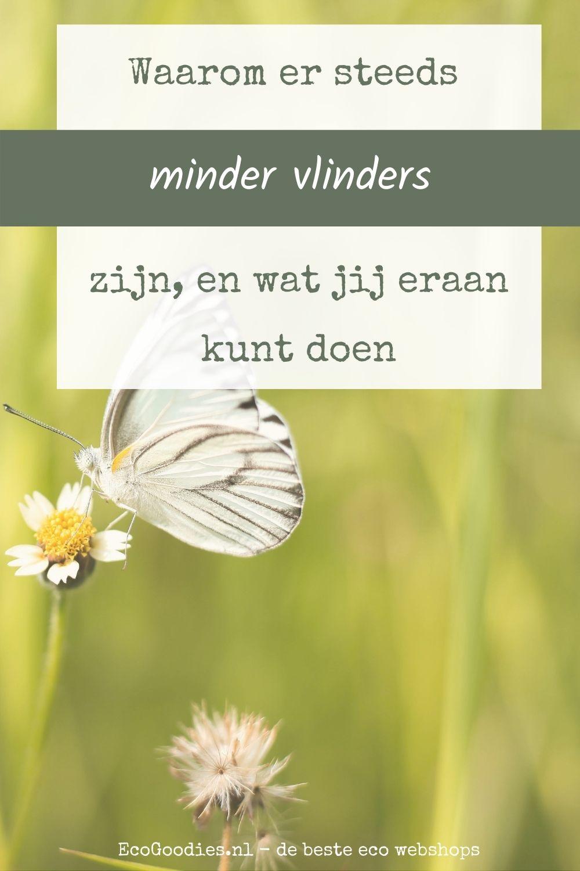 pinterest 32